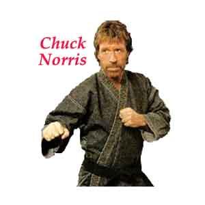 chuck_norris_random_fact_generator_6_3957_2224_image_2578.jpg